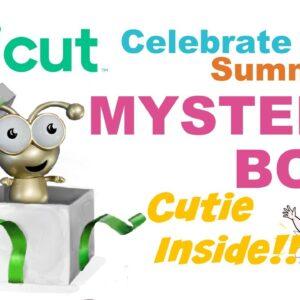 Celebrate Summer Cricut Mystery Box