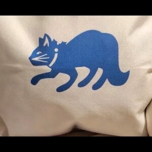 Cricut 101: Infusible Ink Cat Pillow