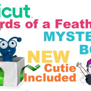 Cricut Mystery Box - Birds of a Feather [NEW CUTIE]
