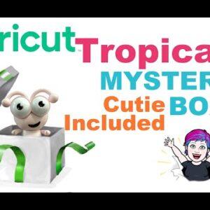 Tropical Cricut Mystery Box