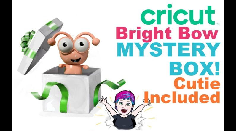 Cricut Bright Bow Mystery Box Cutie inside