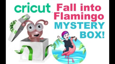 Fall Into Flamingo Cricut Mystery Box